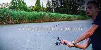 อุปกรณ์ตกปลา เลือก เบ็ดตกปลา